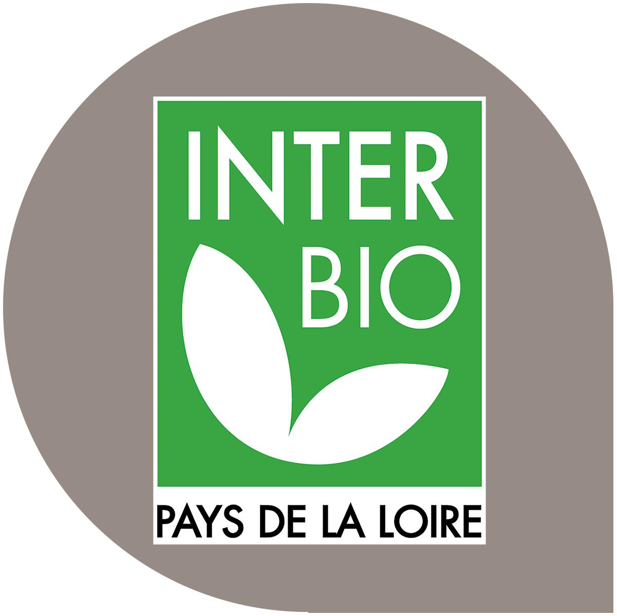 nouveau_logo_IB_PNG.png